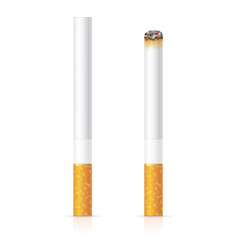 Realistic Cigarette with Traditional Filter. Vector