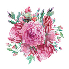 different watercolor roses romantic collection