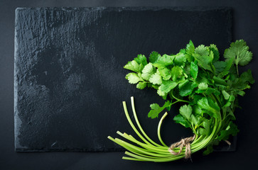 Fresh green coriander, coriander leaves on a black background. Selective focus.