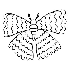 Black line butterfly for coloring book
