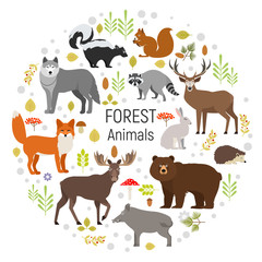Set of forest animals in a circle isolated on white background. Vector illustration. Moose, wild boar, bear, fox, rabbit, wolf, skunk, raccoon, deer squirrel hendgehog