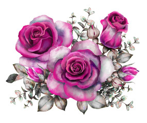 watercolor flowers. romantic floral illustration, purple rose. branch of flowers isolated on white background. Leaf and buds. Bouquet, composition for wedding or greeting card