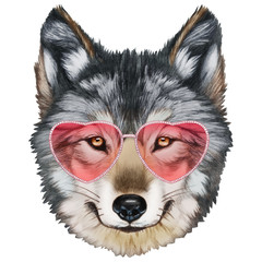 Wolf in Love! Portrait of  Wolf with sunglasses. Hand drawn illustration.