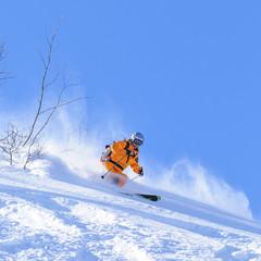 Skifahrer beim Powdern