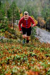 Hiker ascending steep hill, Kesankitunturi, Lapland, Finland