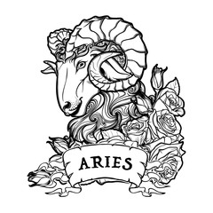 Zodiac sign of Aries with a decorative frame of roses Astrology concept art. Tattoo design. Sketch isolated on white background. EPS10 vector illustration.