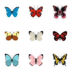Insects butterflies icons set. Flat illustration of 9 insects butterflies vector icons for web