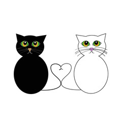 Black and white cat on white background