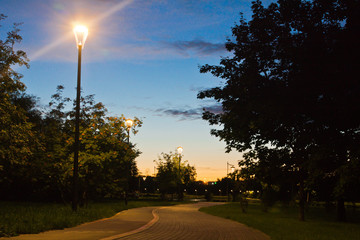 walking trail in evening summer park