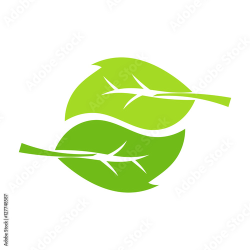 two leaves vector stock image and royalty free vector files on rh fotolia com
