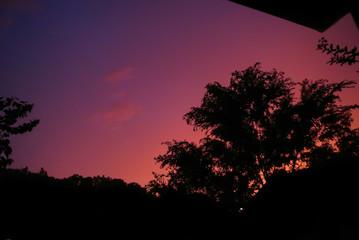 Gradient Sunset