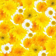 yellow flowers, seamless pattern