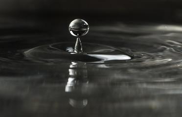 Water drop. Water splash in dark.