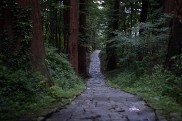 石段の参道
