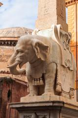 Roma Elefantino Piazza della Minerva