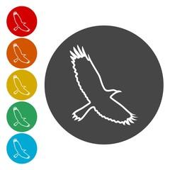 Crow (Raven) vector silhouette icons set