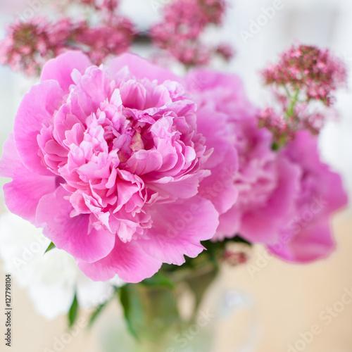 rosa pfingstrosen in vase zdj stockowych i obraz w royalty free w obraz 127798104. Black Bedroom Furniture Sets. Home Design Ideas