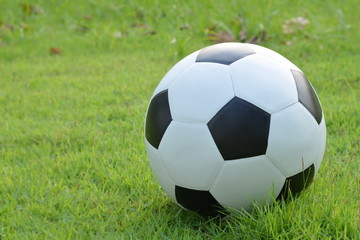 Football or soccer ball on the lawn,outdoor activities.