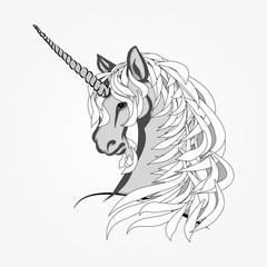 The head of the unicorn vector