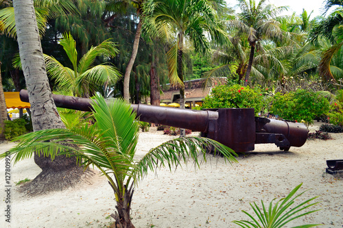 Artillery left over from World War II on the island of