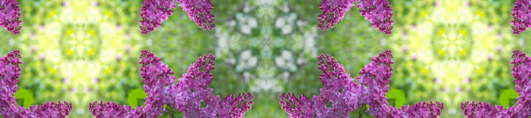 Wall Mural - panorama  pattern of fresh lilacs