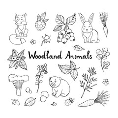 Doodle set of cute animals with vector doodle floral set