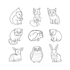 Doodle set of cute animals with squirrel, fox, lynx, raccoon, hedgehog, bear, deer, owl and rabbit. Cute forest animal set,doodle sketch collection