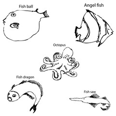 Marine inhabitants with names. Pencil sketch by hand.