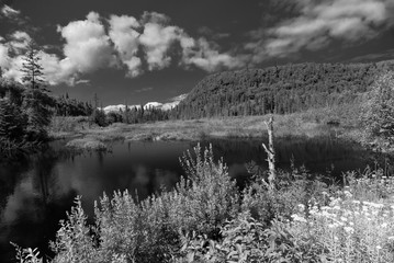 large still lake with fluffy clouds reflecting in water