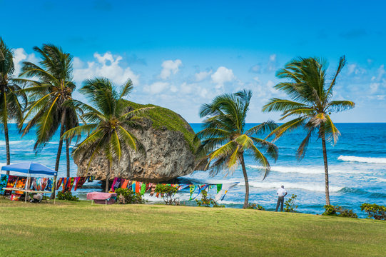Barbados Shore Line in the Caribbean