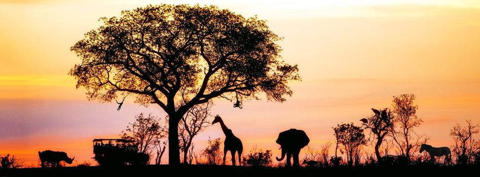 African Safari Silhouette Banner
