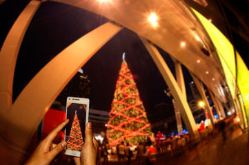 Hand of photographer with smart phone shooting image on blurred Christmas day background.