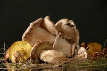 Fresh mushrooms on dark background