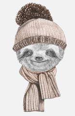 Portrait of Sloth with hat and scarf. Hand-drawn illustration.