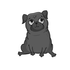 Cute pug. Vector hand drawn cartoon illustration.