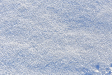 Snowy surface as background.