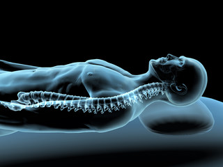 Reclining Man with X-ray Spinal Column