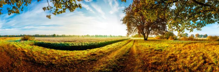 Panorama einer idyllischen Landschaft im Herbst im Licht der Morgensonne