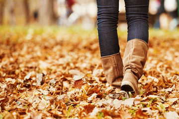 Autumn Walk. Close up.