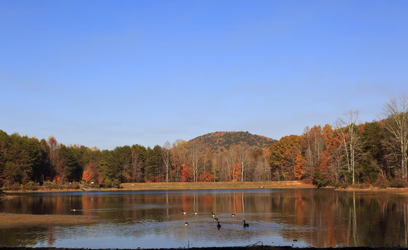The lake at Crowders Mountain State Park with the Canadian geese swimming