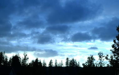 Overcast / Dark Clouds and tree silhouettes.
