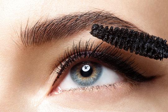 Close-up of make-up eye with long lashes with black mascara