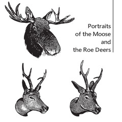 Isolated vector images of Moose and Roe Deers. Head of elk and deer. Graphic logo in engraving style. Illustration for the hunt theme or zoo.
