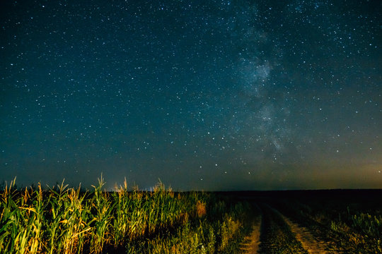 Starry sky over country road