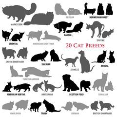Cute Cat in 20 Various Breeds Vector Silhouette Set