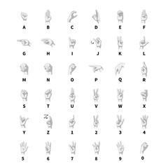 Sign language interpreter, latin alphabet grayscale signs on white