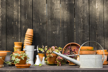 romantic idyllic plant table in the garden with old retro flower pot pots, tools and plants