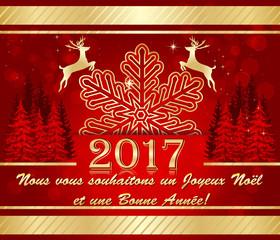 Cartes de Bonne Année: Nous vous souhaitons un Joyeux Noël et une Bonne Année