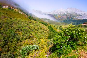 mountain landscape in summer.  Spain