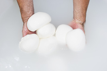 Cheesemaker, showing freshly made mozzarella